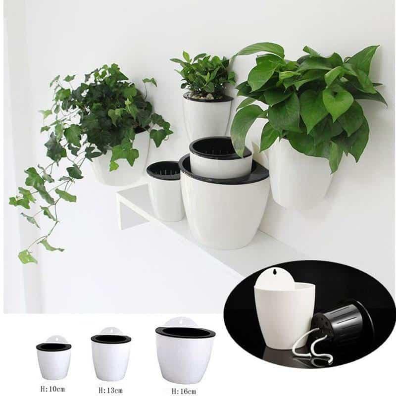 Self Watering Plant Pot