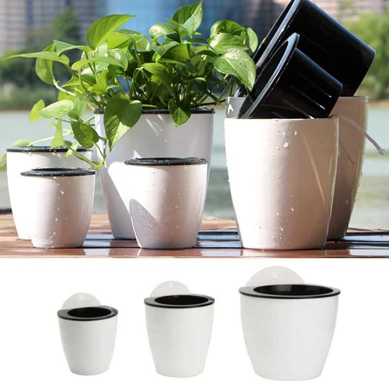 Self Watering Plant Pot